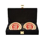 Daniel Bryan WWE World Heavyweight Championship Replica Title Side Plate Box Set