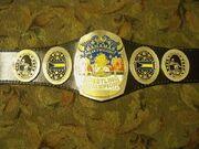 NWA Bahamas Champion (2)
