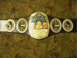 NWA Florida Bahamian Championship