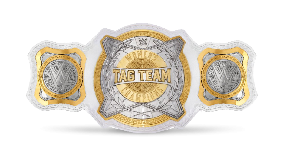 Image result for wwe women's tag team championship