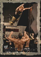 2004 WWE Chaos (Fleer) Spike Dudley 25