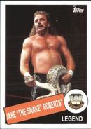 2015 WWE Heritage Wrestling Cards (Topps) Jake Roberts 25