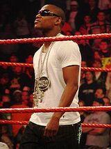 List of Celebrity guest stars in wrestling