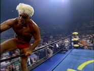 The Great American Bash 1995.00045