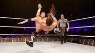 WWE World Tour 2014 - Dublin.1