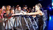 WrestleMania Revenge Tour 2013 - Amnéville.1