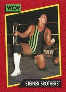 1991 WCW (Impel) Steiner Brothers 113