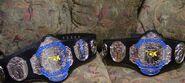 FCW Tag Team Championship