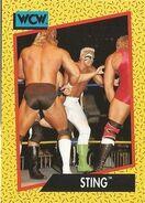 1991 WCW (Impel) Sting 1