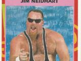 1995 WWF Wrestling Trading Cards (Merlin) Jim Neidhart (No.9)