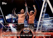 2018 WWE Road to Wrestlemania Trading Cards (Topps) The Hardy Boyz 25