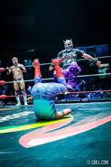 CMLL Domingos Arena Mexico (December 1, 2019) 1