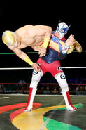 CMLL Martes Arena Mexico (June 12, 2018) 12