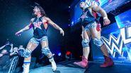WWE Live Tour 2017 - Cardiff 2
