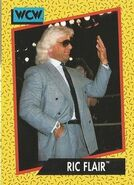1991 WCW (Impel) Ric Flair 37