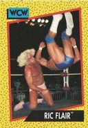 1991 WCW (Impel) Ric Flair 40
