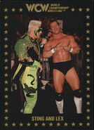 1991 WCW Collectible Trading Cards (Championship Marketing) Sting and Lex 40