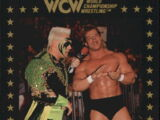 1991 WCW Collectible Trading Cards (Championship Marketing) Sting and Lex (No.40)