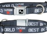 "CM Punk ""Best In The World"" Dog Collar"