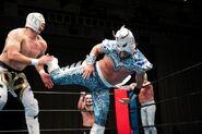 Estrella Executive Committee-Stardom-Tokyo Gurentai Produce Lucha Libre Estrella Fiesta 19