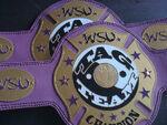 WSU Tag Team Championship