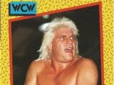 1991 WCW (Impel) Tommy Rich (No.93)