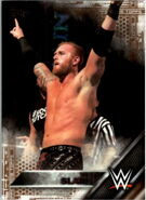 2016 WWE (Topps) Then, Now, Forever Heath Slater 123