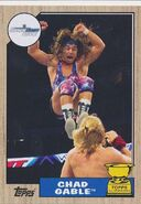 2017 WWE Heritage Wrestling Cards (Topps) Chad Gable 45