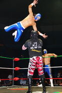 CMLL Martes Arena Mexico 11-14-17 19