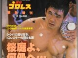 Weekly Pro Wrestling No. 1061