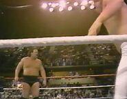 1.16.88 WWF Superstars.00012