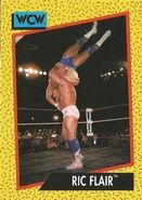 1991 WCW (Impel) Ric Flair 42