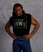 Shawn Michaels6
