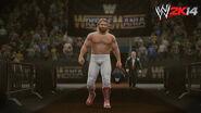 WWE 2K14 Screenshot.77