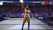WWE 2K14 Screenshot.128