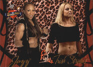 2004 WWE Divas 2005 (Fleer) Jazz & Trish Stratus 59