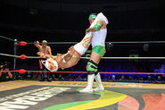 CMLL Domingos Arena Mexico (January 13, 2019) 1