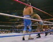 1.9.88 WWF Superstars.00006
