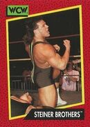 1991 WCW (Impel) Steiner Brothers 110