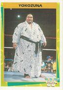 1995 WWF Wrestling Trading Cards (Merlin) Yokozuna 140