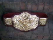 NWA World Tag Team Champion (old)