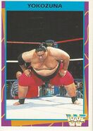 1995 WWF Wrestling Trading Cards (Merlin) Yokozuna 65