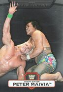 2010 WWE Platinum Trading Cards High Chief Peter Maivia 12