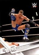 2017 WWE Wrestling Cards (Topps) Tyson Kidd 2