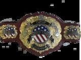 IWGP United States Heavyweight Championship
