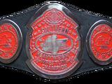 NWA Florida Southern Heavyweight Championship