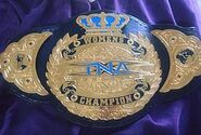 TNA Knockout championship 2