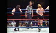 Tag Teams (Legends of Wrestling).00009