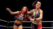 WWE World Tour 2015 - Nottingham.12