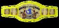 WWF IC 1991
